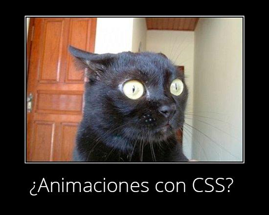 animaciones-css-cat